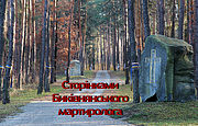 Страницами Быковнянского мартиролога: София Налепинская-Бойчук