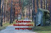 По страницам Быковнянского мартиролога: Владимир Андриевский